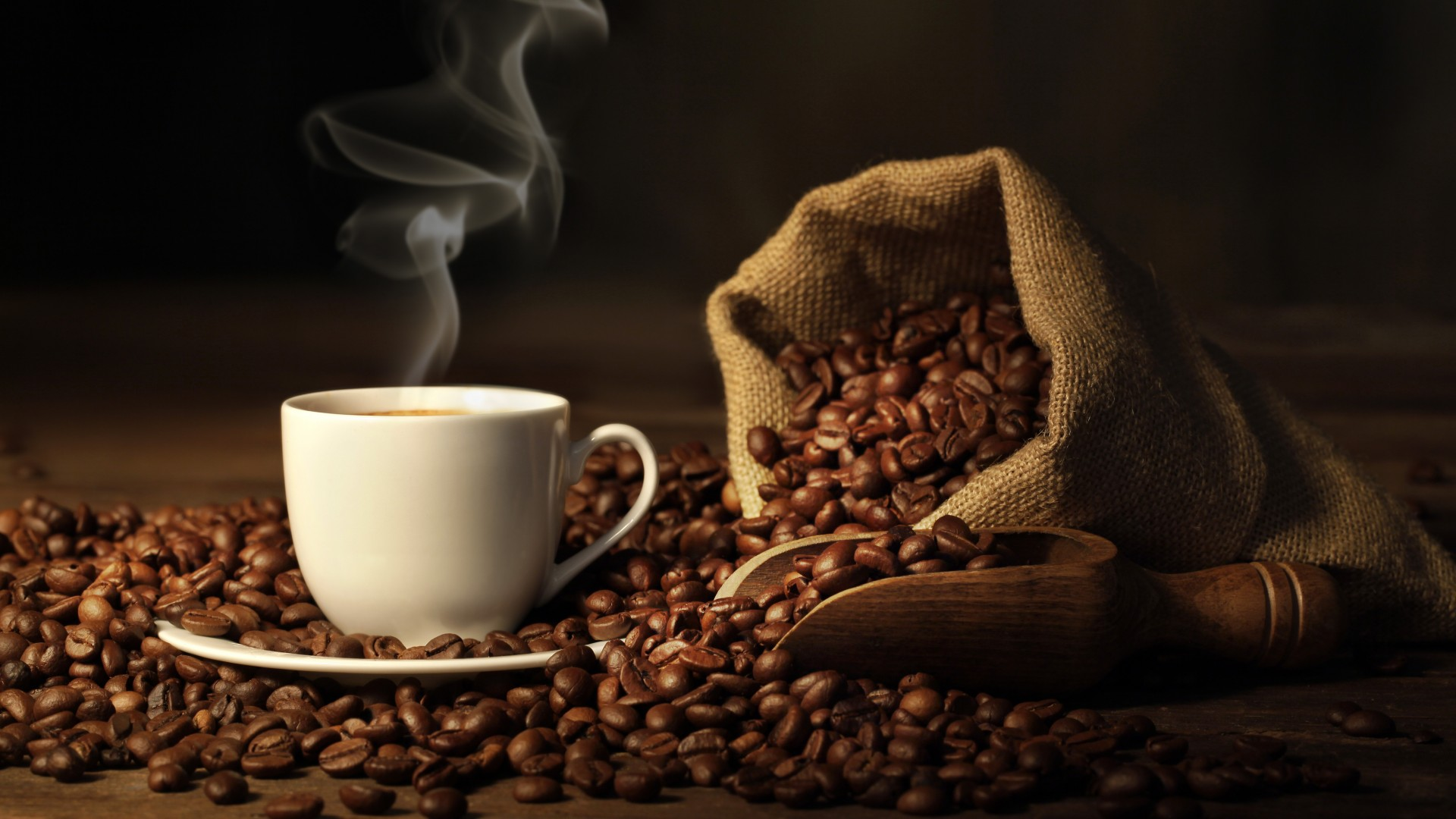 Best Coffee Shops in All Over The World That You Must Try